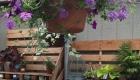 Cropley S Garden Center